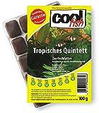Cool Fish Tropisches Quintett, 15 x 100g-Blister, Fisch-Frostfutter, Aquarium, Aquaristik, Fischfutter