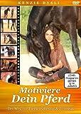 Motiviere Dein Pferd Der kostenlos online stream