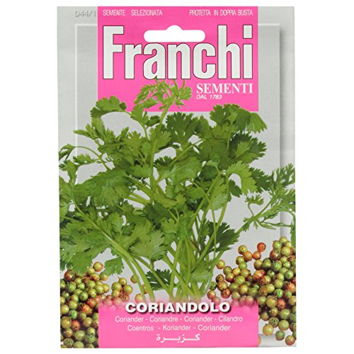 Franchi Coriandre