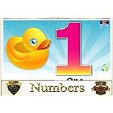 Topper : Kiddies Flash Cards - Numbers