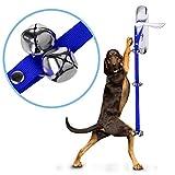 Sicai, campanello per cane per l'addestramento in casa del cane