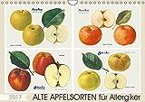 Alte Apfelsorten für Allergiker (Wandkalender 2017 DIN A4 quer): Ade Apfel muss es auch für Allergiker nicht heißen. Manche alte Apfelsorten gelten 14 Seiten (CALVENDO Lifestyle)