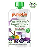 Bio-Babybrei im Quetschie von Pumpkin Organics - Babynahrung mit viel Gemüse, ohne Zusatzstoffe - ZAUBER mit Karotte, Brokkoli mit Banane, Blaubeere und Quinoa (10x100g) ab dem 12. Monat