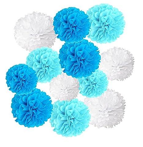 Wartoon Seidenpapier Pompons Blumen Ball Dekorpapier Kit für Geburtstag, Hochzeit, Baby Dusche, Parteien, Hauptdekorationen, Partei Dekoration - 12 Stück (Blau, Himmel blau und (Blumen Pappteller)