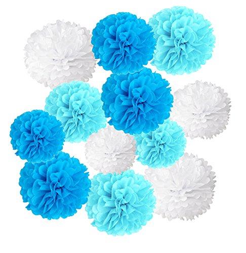Pom poms di carta velina decorativo palla fiore, wartoon 12 pezzi palle di carta appendere per il compleanno decorazione della festa nuziale, ( blu, cielo blu e bianco)