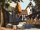 Abenteuer auf dem Reiterhof 4: Die Meisterschule