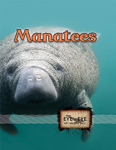Manatees (Eye to Eye With Endangered Species)