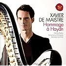 Hommage � Haydn