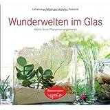 Wunderwelten im Glas: 50 kleine, feine Pflanzenarrangements  -