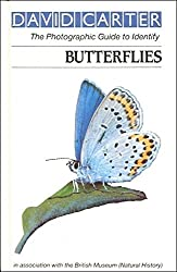 Butterflies (Roger Phillips guides)