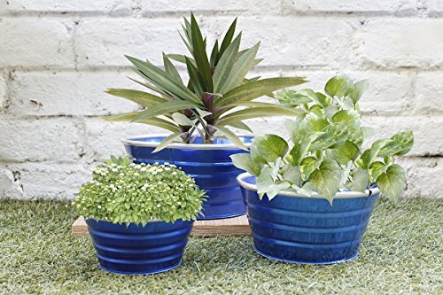 garden-planters-floral-galvanized-metal-multipurpose-basket-bin-potting-pots-set-of-3-ideals-for-hom