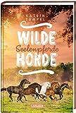 Wilde Horde  3: Seelenpferde (3)