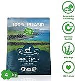 Irish Pure Adult Atlantik-Lachs mit Kelp-Alge & Gemüse - Hypoallergenes Trockenfutter für Hunde, Hoher...
