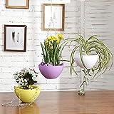 Multi Colored Flower pot contenitore, a forma di vaso autoirrigante con catena, set di 3, Purple/Yellow / White