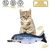 EKKONG Juguete Hierba Gatera,Juguete Interactivo, Simulación de Peces de Peluche Juguetes, Catnip Fish Toys, Juguete Electrico Automático para Gatos Gatito (Type B)