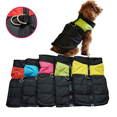 OULII Vêtements pour animaux de compagnie pour chien chat chiot chien manteau veste Ski pour animaux de compagnie gilet imperméable - taille M (Rose rouge)
