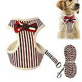 FOONEE Hundegeschirr, Hundegeschirr, Leinen-Set aus weichem Netz-Nylon mit Verstellbarer Leine, einfache Kontrolle für Kleine und mittelgroße Hunde und Katzen Rot - L