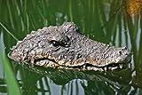 Boltze 5274300 Dekofigur Gartenfigur Schwimmtier Krokodil, Kunststoff, braun, 30 x 50 x 8 cm