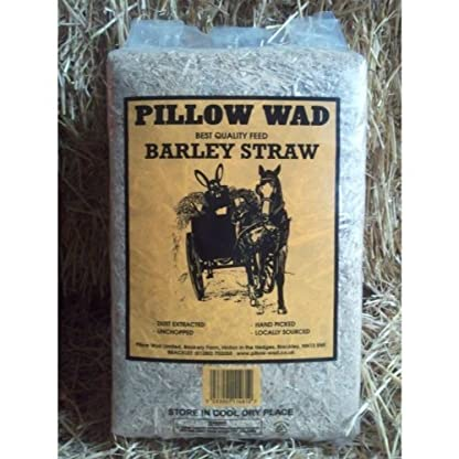Pillow Wad Straw, Large 1