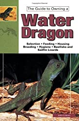 The Guide to Owning a Water Dragon