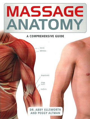 Massage Anatomy: A Comprehensive Guide