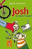 Josh ist mein Freund: Roman (Gulliver) - Sigrid Zeevaert
