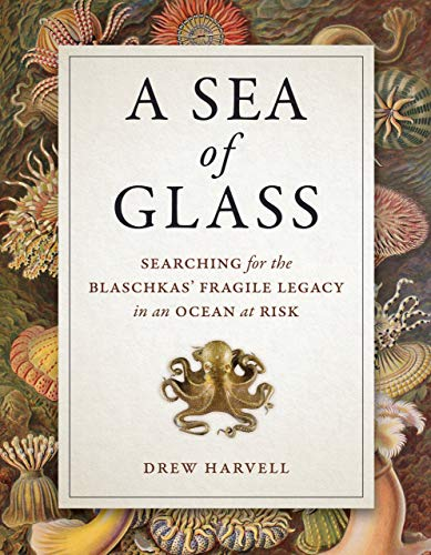 A Sea of Glass - Searching for the Blaschkas` Fragile Legacy in an Ocean at Risk (Organisms and Environments, Band 13) -