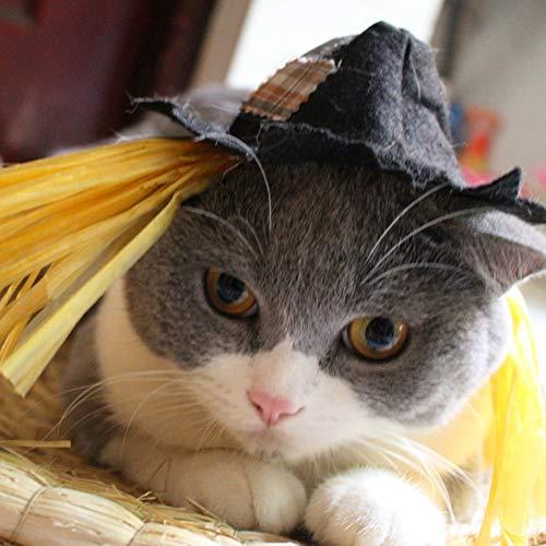 Vogelscheuche Hunde Kostüm - Halloween Vogelscheuche Haustier Hut Weihnachten Katze Cosplay Kostüm Zubehör Party Karneval Zum Klein Hunde Und Katzen. Cacoffay,Black,S