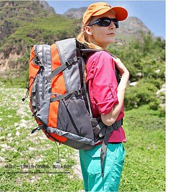40 L Rucksack Camping & Wandern Klettern Legere Sport Jagd Reisen Radsport Schule Draußen Leistung Legere SportWasserdicht Regendicht Black