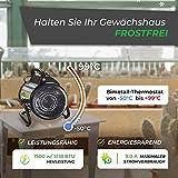Bio Green Elektrogebläseheizung Palma 2000 Watt - 4