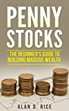 Penny Stocks: The Beginner's Guide to Building Massive Wealth (English Edition)