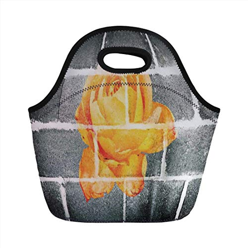Jieaiuoo Portable Lunch Bag,Rustic Flower Decor,Trippy Modern Graffiti with Rose Petals on Brick Wall Urban City Life,Grey Orange,for Kids Adult Thermal Insulated Tote Bags
