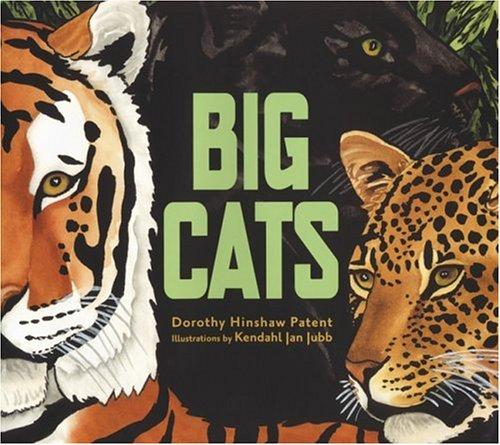 Patent-leopard (Big Cats)