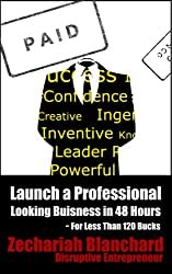 Launch a Professional Looking Business in 48 Hours: For Less Than 120 Bucks (English Edition)