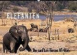 Elefanten - Die sanften Riesen Afrikas (Wandkalender 2016 DIN A2 quer): Fotografiert in den Nationalparks Chobe, Addo und Hwange (Monatskalender, 14 Seiten) (CALVENDO Tiere)