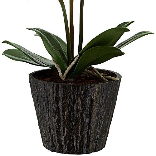 LED Orchidee Blumentopf Pflanze Beleuchtung Blume Blüten Blätter Globo 28003 - 4