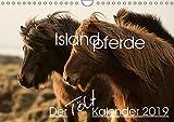 Islandpferde - Der Tölt Kalender (Wandkalender 2019 DIN A4 quer): Dieser Kalender ist speziell für Islandpferdeliebhaber gemacht und zeigt die Pferde ... (Monatskalender, 14 Seiten ) (CALVENDO Tiere)