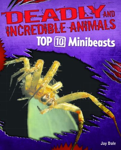 Top 10 Minibeasts (Deadly and Incredible Animals)
