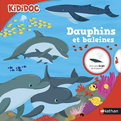 Dauphins et baleines (41)