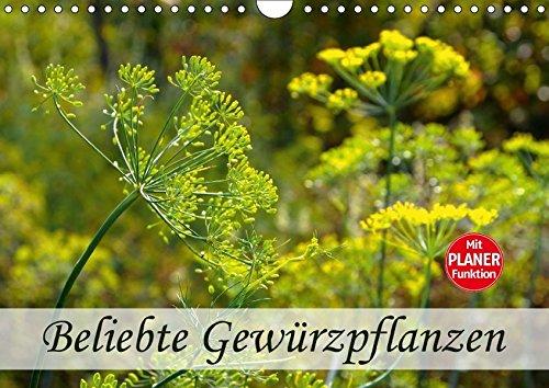 Gewürzpflanzen A4 quer):