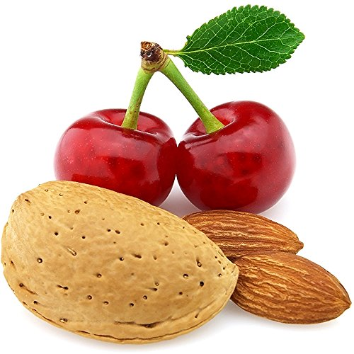 Preisvergleich Produktbild Cherry Mandeln Klimaanlage Lufterfrischer & Geruchsentferner Spray Mainstays 3125ml