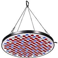 Niello® Reflector 50W LED Pflanzenlampe LED Grow Light Vollspektrum Pflanzenlicht Led Grow Lamp nur 1 cm Dick mit Schalter für Zimmerpflanzen Gemüse und Blumen