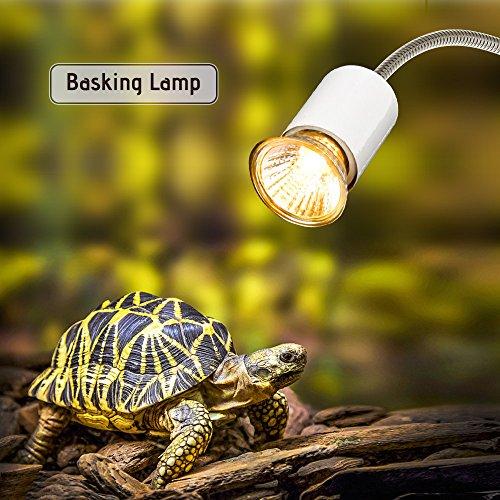 für Aquarium Reptil mit Clip 25W 360 ° Drehbar (Schildkröte-wärme-lampe)