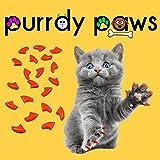 purrdy Pfoten 40er orange Soft Nail Kappen für Katzen Krallen (klein)