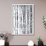 Newroom Design NEWROOM Wandbild 70x50cm Wandposter fertig zum Aufhängen gerahmt Birke Bäume Frost Natur Grau Silber Premium