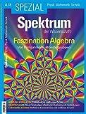 Spektrum Spezial - Faszination Algebra: Von Primzahlen zu Monstergruppen (Spektrum Spezial - Physik, Mathematik, Technik)