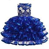 LEXUPE Baby Mädchen Prinzessin Kleid Blumenmädchenkleid Taufkleid Festlich Kleid Hochzeit Partykleid Festzug Babybekleidung(Blau,120)
