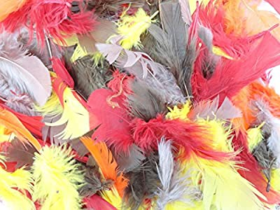 100+ Coloured Feathers 14G - Crafts Collage Hats Costume Millinery Fly Fishing from a2bsales