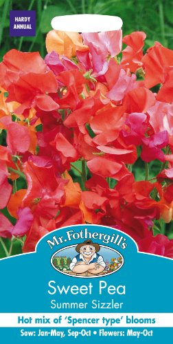 mr-fothergills-19192-summer-sizzler-tall-sweet-pea-flower-seeds