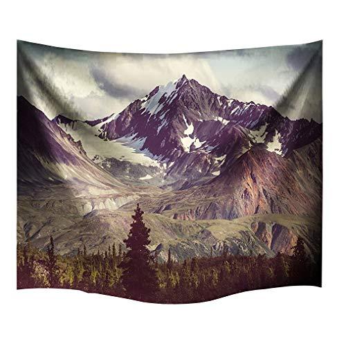 izielad Alaska Mountains Tapisserie Dekor Arktis Landschaft Wildnis und Wandern Berg in USA Bild Wohnheim Zubehör Wandbehang Tapisserie